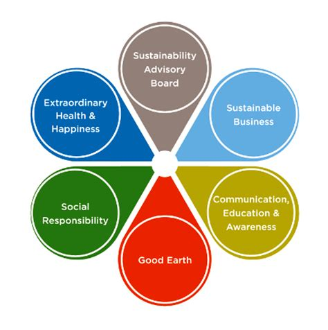 effective communication in health and social care essay